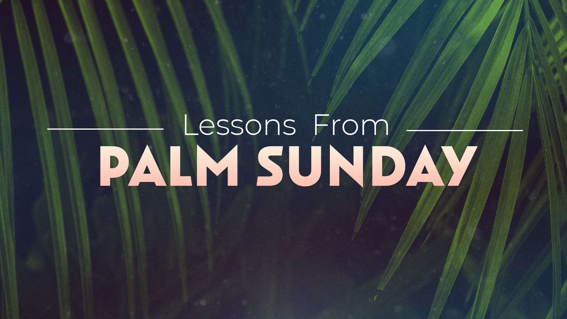 Lessons From Palm Sunday